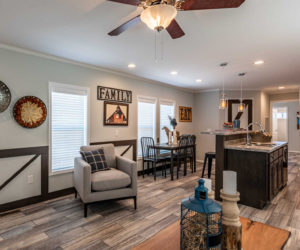 living room details in the house model 1502 from Pratt homes in Tyler Texas